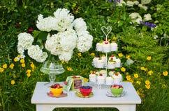Dessertlijst in een tuin Stock Afbeeldingen