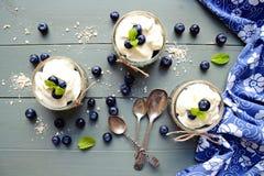 Desserts de granola Photo libre de droits