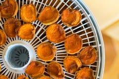 Dessiccateur de nourriture avec les abricots secs sur une table photographie stock libre de droits