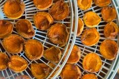 Dessiccateur de nourriture avec les abricots secs sur une table photo libre de droits