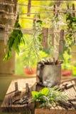 Dessiccateur en bois rustique avec les herbes fraîches dans la campagne photos libres de droits
