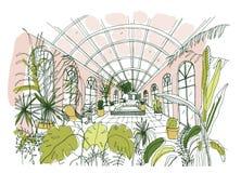 Dessin élégant d'intérieur de pavillon ou de serre chaude complètement des plantes tropicales avec le feuillage luxuriant Croquis illustration libre de droits