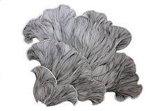 Dessin abstrait de champignon Photos libres de droits