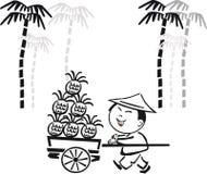 Dessin animé asiatique tropical de fruit Image stock