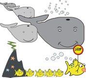 Dessin animé de baleine Photos libres de droits