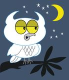 Dessin animé de hibou de nuit photo stock