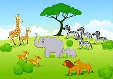 Dessin animé de l'Afrique de safari Image libre de droits