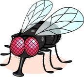 Dessin animé de mouche illustration stock