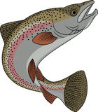 Dessin animé de poissons de truite Photo libre de droits
