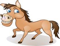 Dessin animé drôle de cheval Photos stock