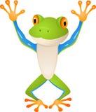 Dessin animé drôle de grenouille Images libres de droits