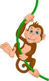 Dessin animé heureux de singe Photos libres de droits