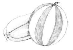 Dessin au crayon de pastèque Image stock