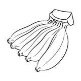 Dessin au trait de banane - ligne simple vecteur illustration stock