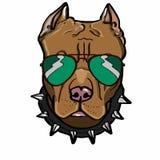 dessin brun de chien et de lunettes de soleil illustration libre de droits