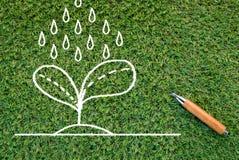 Dessin croissant d'arbre sur la texture d'herbe verte Images libres de droits