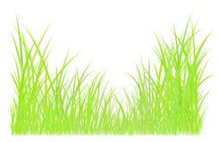Dessin d'herbe verte Image libre de droits