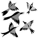 Dessin d'oiseaux illustration de vecteur