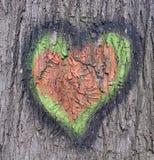 Dessin de coeur sur l'écorce sur l'arbre Photo libre de droits