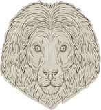 Dessin de Lion Big Cat Head Mane illustration de vecteur