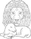 Dessin de Lion Watching Over Sleeping Lamb Photographie stock