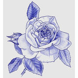 Dessin de main de Rose Image stock