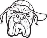 Dessin de tableau blanc - visage fâché de chien illustration de vecteur