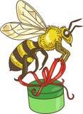 Dessin de transport de boîte-cadeau d'abeille Photos libres de droits