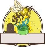 Dessin de transport de cercle de Skep de boîte-cadeau d'abeille Photos stock