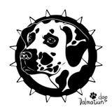 Dessin graphique de vecteur d'une tête de chien, race dalmatienne Images libres de droits