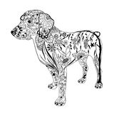 Dessin modelé de chien Griffonnage tiré par la main Style de Zentangle illustration libre de droits