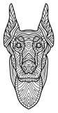 Dessin monochrome d'encre Livre de coloriage pour des adultes La tête d'un dobermann avec le modèle Images libres de droits
