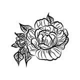 Dessin noir et blanc d'un tatouage de rose Silhouette de branche avec des fleurs des roses et des feuilles Image stock