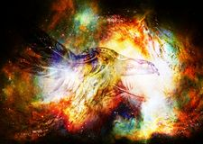 Dessin ornemental de corbeau avec des plumes dans l'espace cosmique images stock