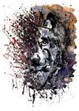 Dessin prédateur de peinture d'aquarelle de loup Images stock