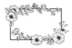 Dessin rose sauvage et croquis de fleur de cadre de fleur Photo libre de droits
