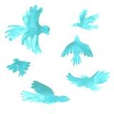 Dessins bleus d'oiseaux d'aquarelle Photographie stock libre de droits