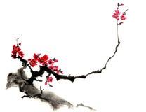 Dessins de style chinois, croquis, fleur de prune Photographie stock libre de droits