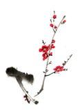 Dessins de style chinois, croquis, fleur de prune Photos libres de droits