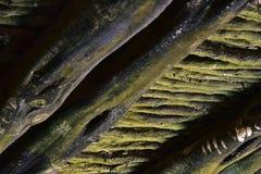 Dessous moussu vert de pont construit avec des troncs et des branches d'arbre suivre des méthodes traditionnelles photos libres de droits