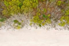 Dessus aérien en bas de vue sur la plage propre blanche de sable et la forêt à feuilles caduques pendant le ressort images stock