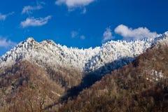 Dessus de cheminée dans la neige dans les smokies Photographie stock libre de droits