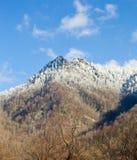 Dessus de cheminée dans la neige dans les smokies Image stock