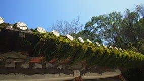 Dessus de construction oriental de toit de mousses photos libres de droits