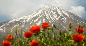 Dessus de Damavand de l'Iran image libre de droits