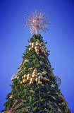 Dessus de l'arbre de Noël avec un ciel filtré à l'arrière-plan Photo stock