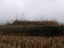 Dessus de la terrasse rurale chinoise Photo libre de droits