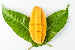 Dessus de mangue sur la vue supérieure de feuilles d'isolement Photos libres de droits
