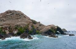 Dessus de montagne avec la réserve d'oiseaux à sept îles Image stock