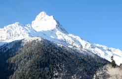 Dessus de montagne dans les montagnes de Dombai image stock